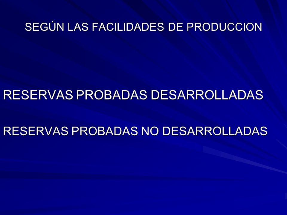 SEGÚN LAS FACILIDADES DE PRODUCCION