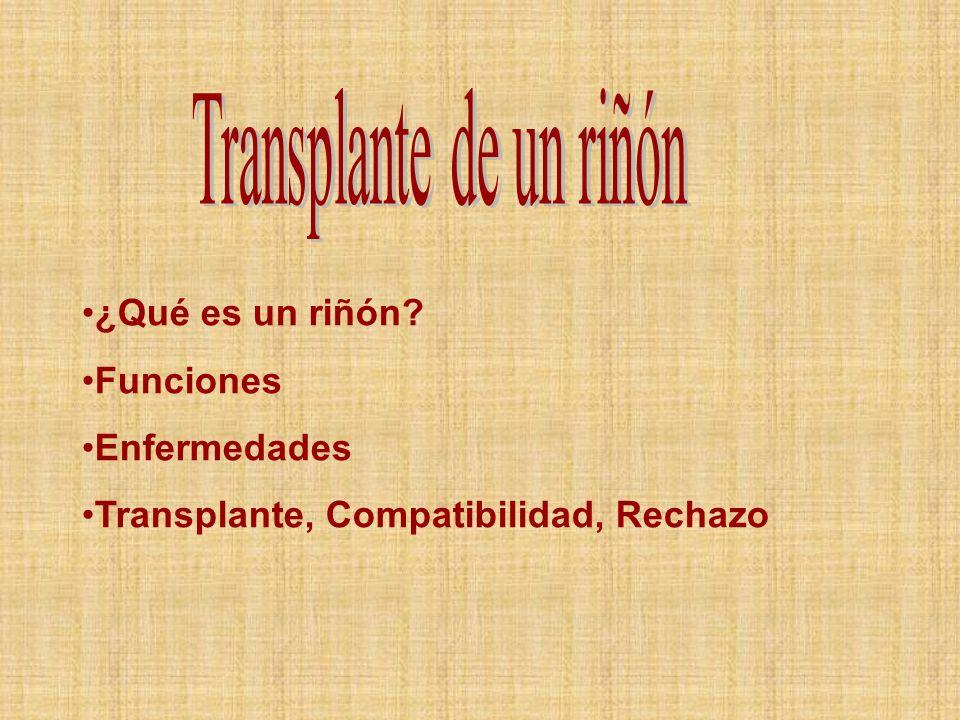Transplante de un riñón