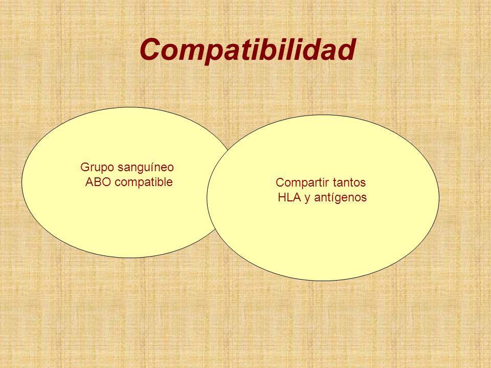 Compatibilidad Grupo sanguíneo ABO compatible Compartir tantos
