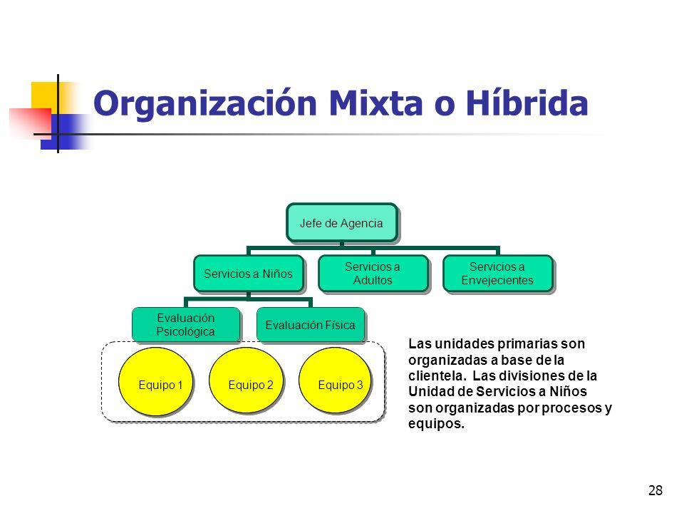 Organización Mixta o Híbrida