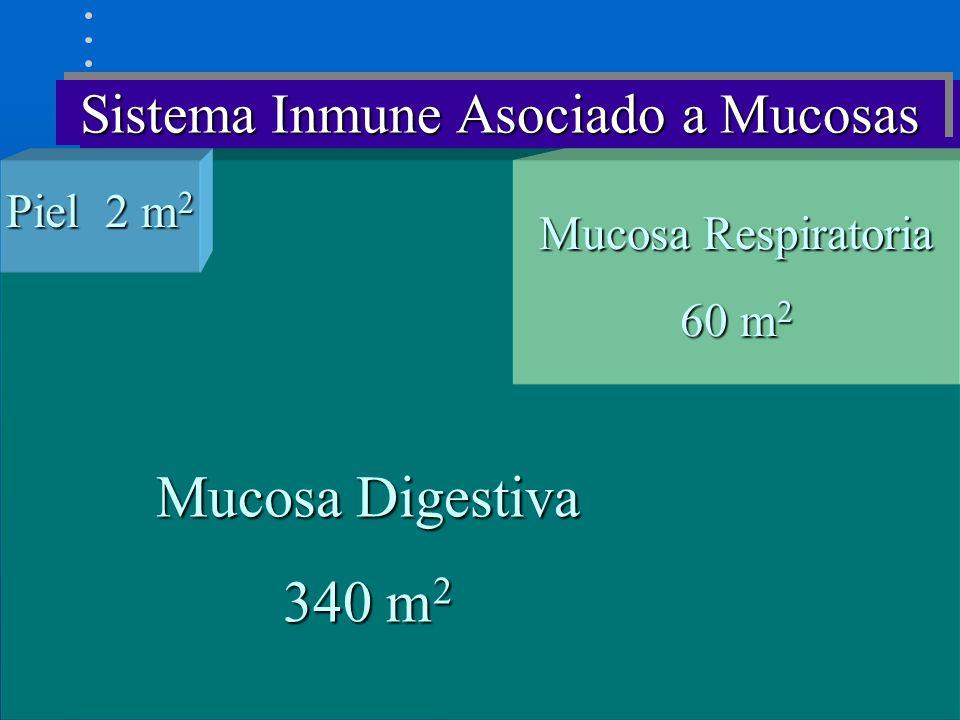 Sistema Inmune Asociado a Mucosas