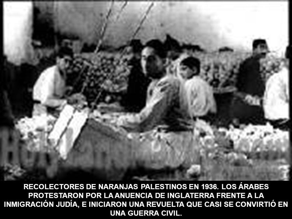 RECOLECTORES DE NARANJAS PALESTINOS EN 1936