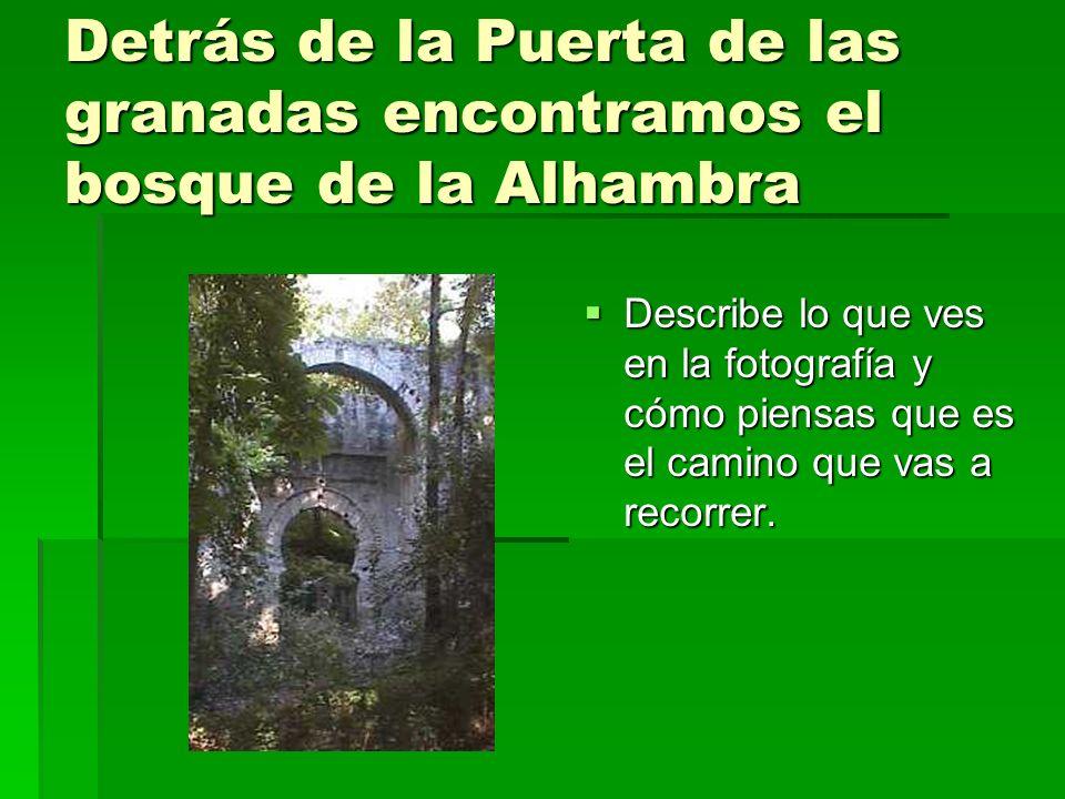 Detrás de la Puerta de las granadas encontramos el bosque de la Alhambra