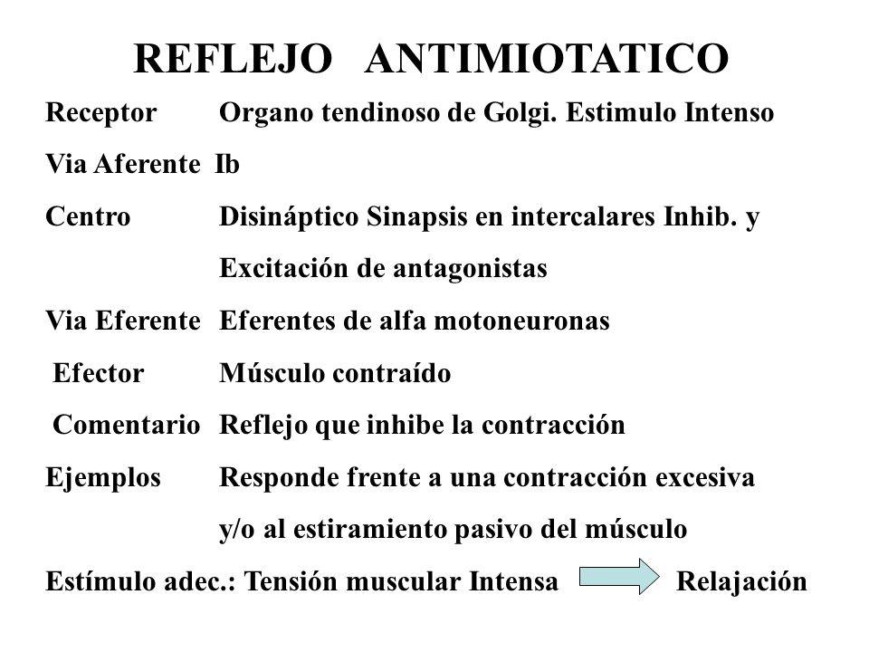 REFLEJO ANTIMIOTATICO