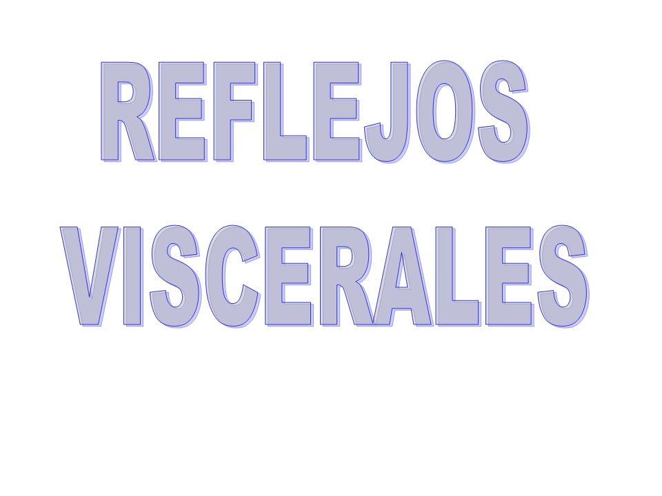 REFLEJOS VISCERALES