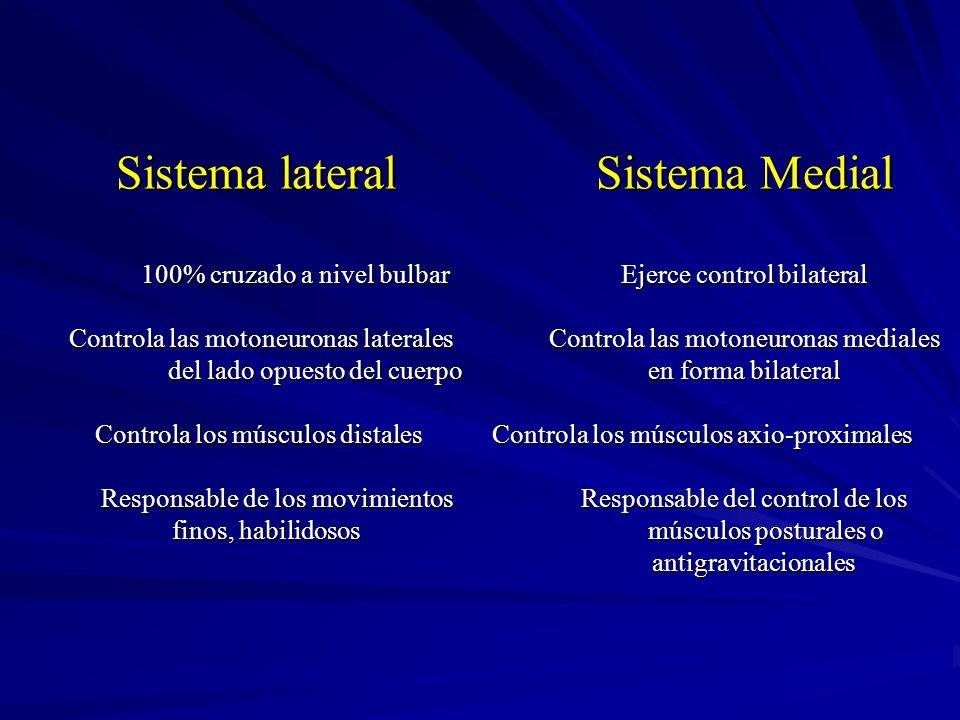 Sistema lateral. Sistema Medial 100% cruzado a nivel bulbar