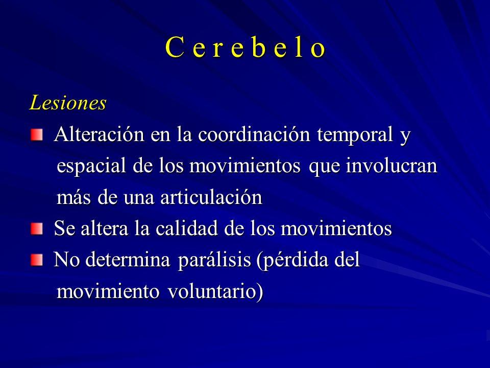 C e r e b e l o Lesiones Alteración en la coordinación temporal y