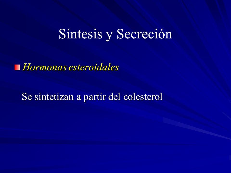 Síntesis y Secreción Hormonas esteroidales