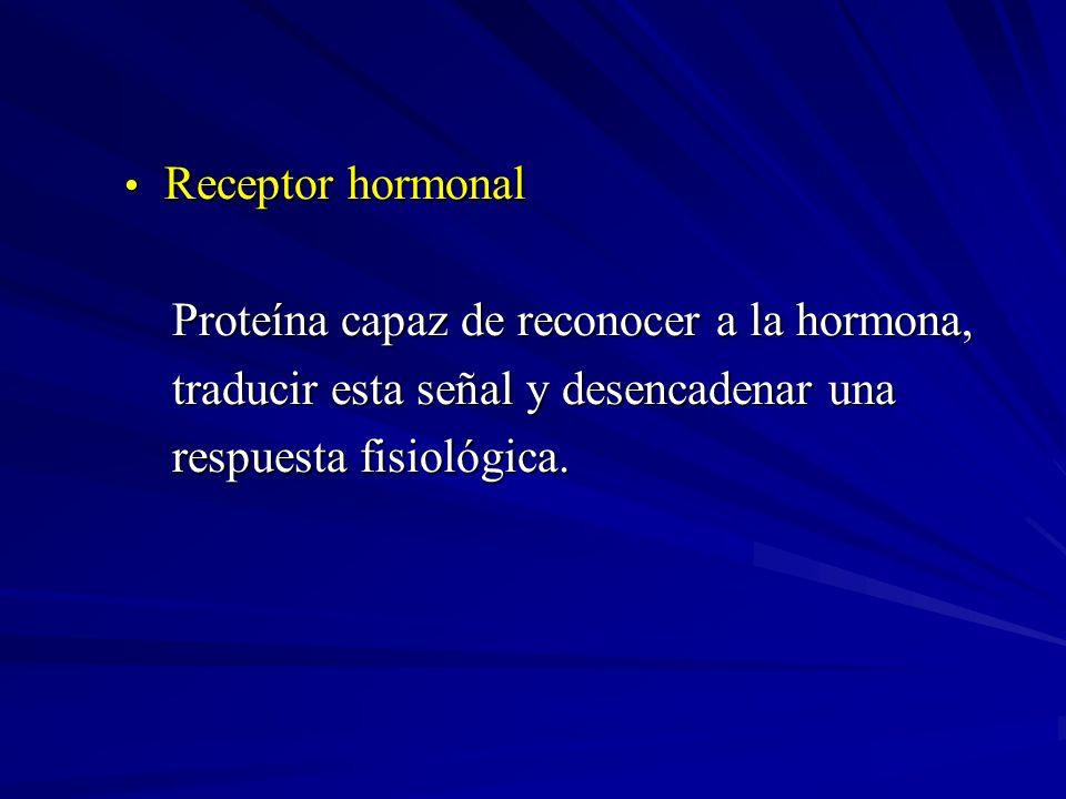 Receptor hormonal Proteína capaz de reconocer a la hormona, traducir esta señal y desencadenar una.