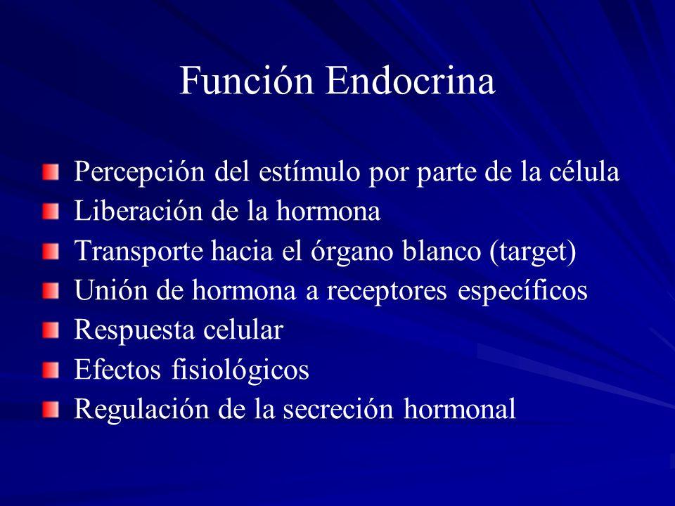 Función Endocrina Percepción del estímulo por parte de la célula