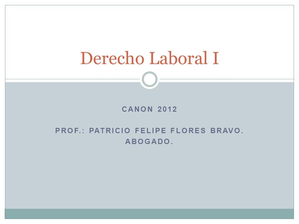 Canon 2012 Prof.: patricio felipe flores bravo. Abogado.