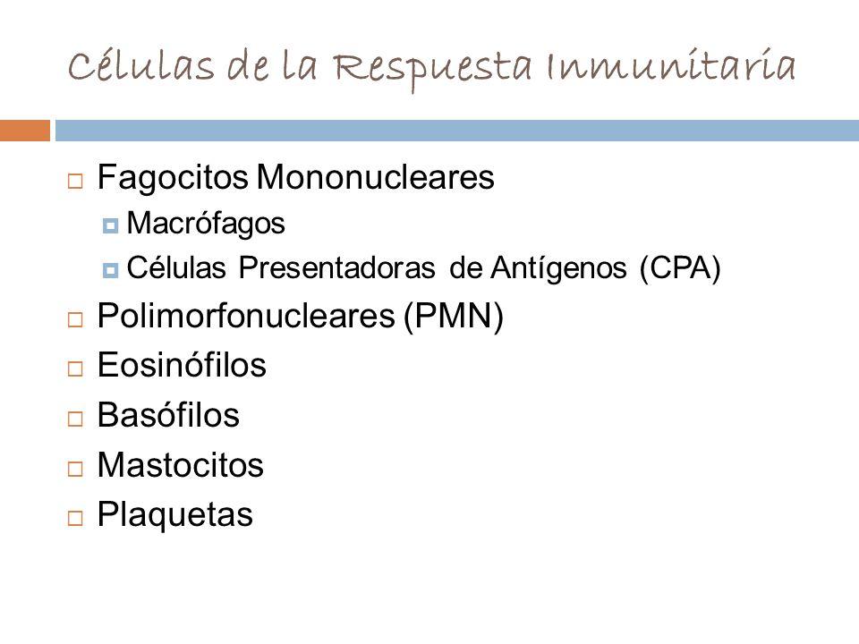 Células de la Respuesta Inmunitaria