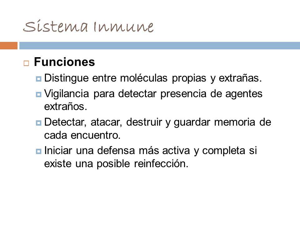 Sistema Inmune Funciones Distingue entre moléculas propias y extrañas.