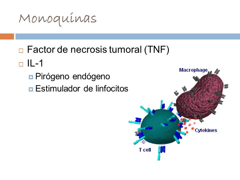 Monoquinas Factor de necrosis tumoral (TNF) IL-1 Pirógeno endógeno