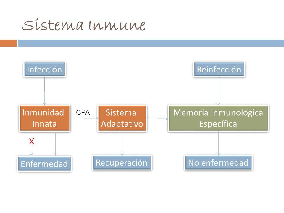 Memoria Inmunológica Específica