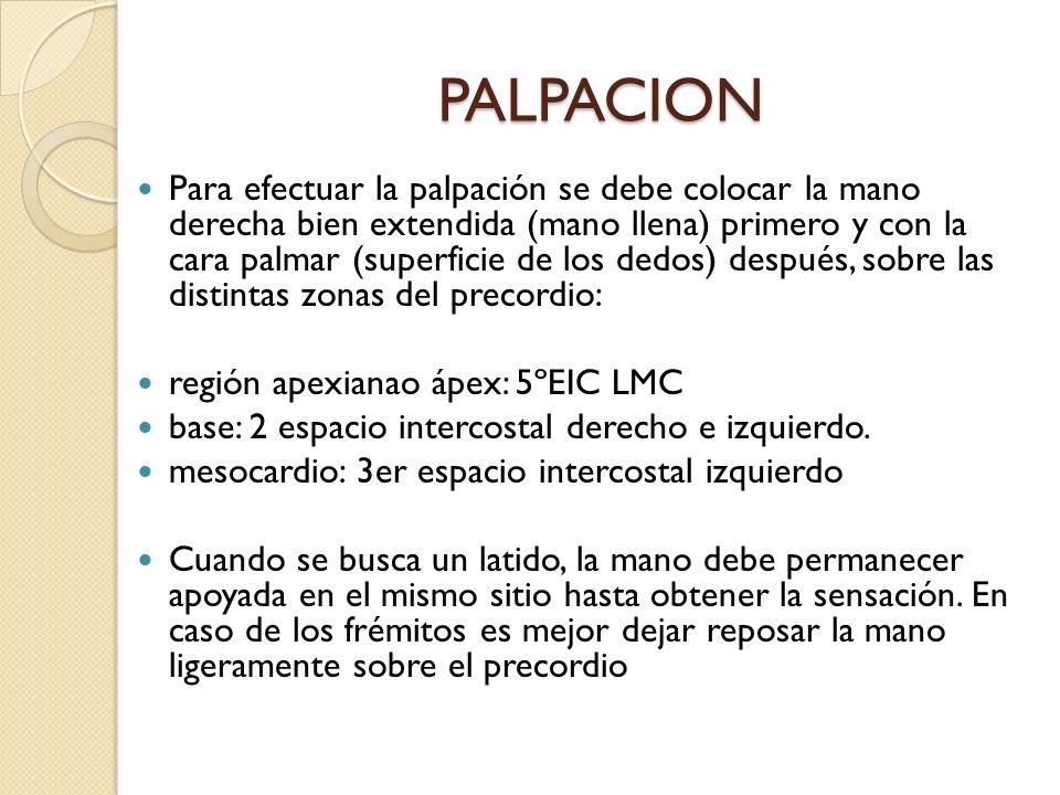 PALPACION