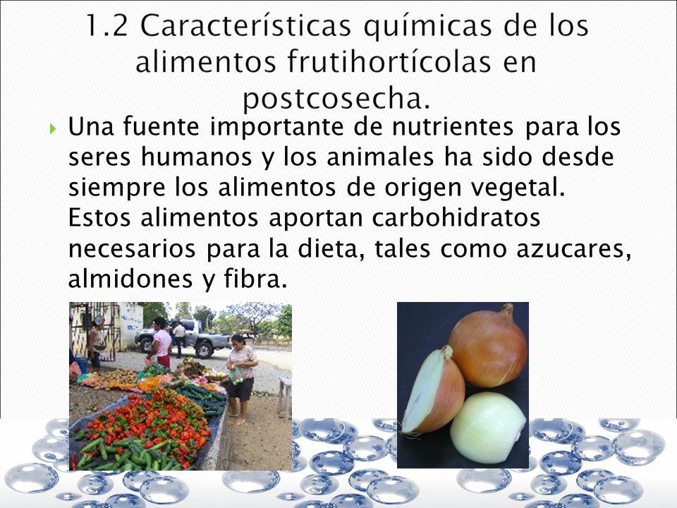 Una fuente importante de nutrientes para los seres humanos y los animales ha sido desde siempre los alimentos de origen vegetal.