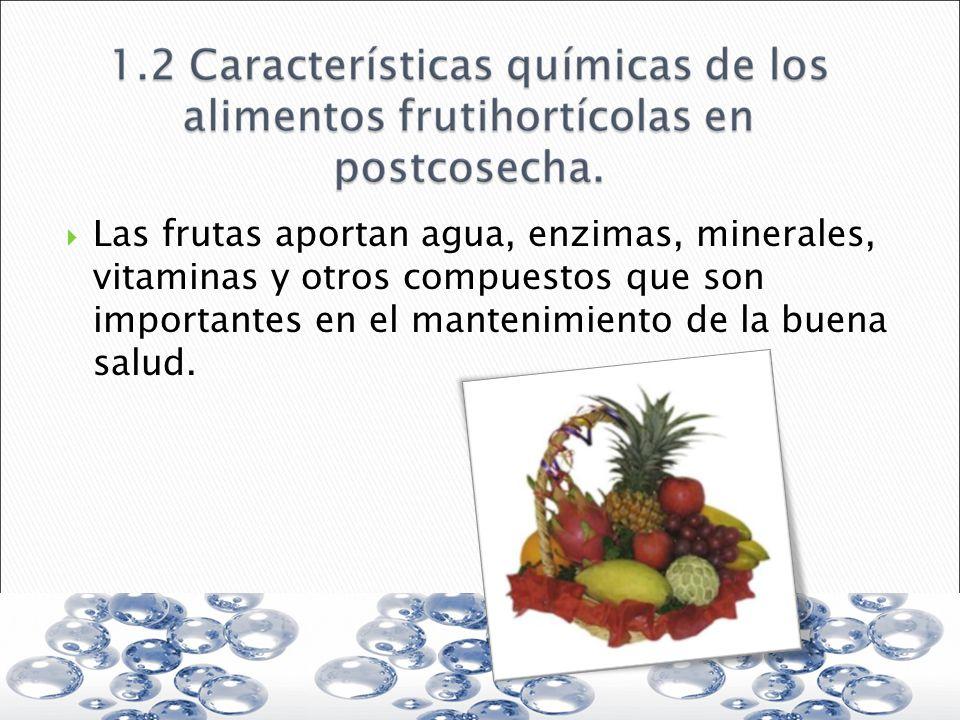 Las frutas aportan agua, enzimas, minerales, vitaminas y otros compuestos que son importantes en el mantenimiento de la buena salud.