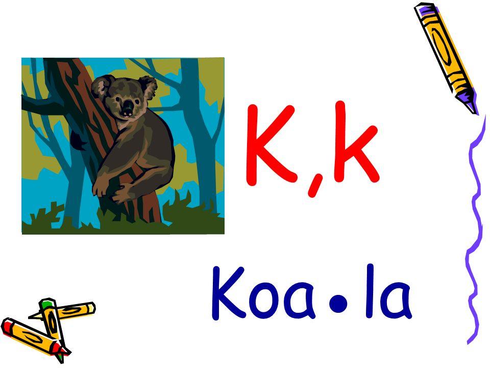K,k Koa●la