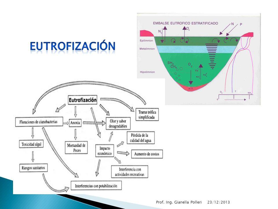 eutrofización Prof. Ing. Gianella Polleri 23/03/2017