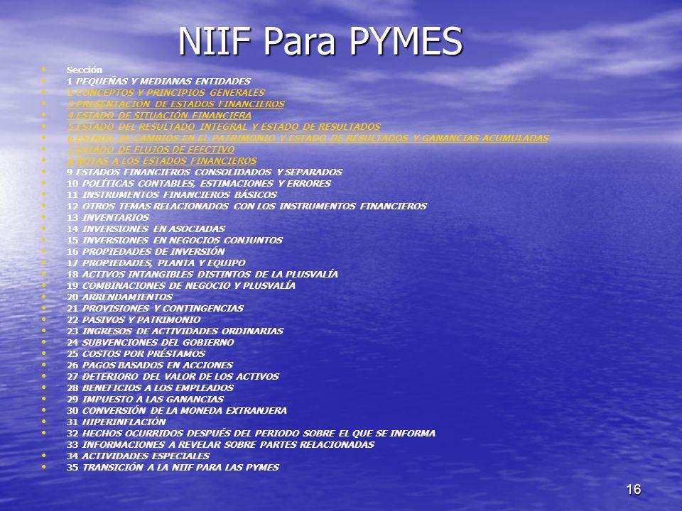 NIIF Para PYMES Sección 1 PEQUEÑAS Y MEDIANAS ENTIDADES
