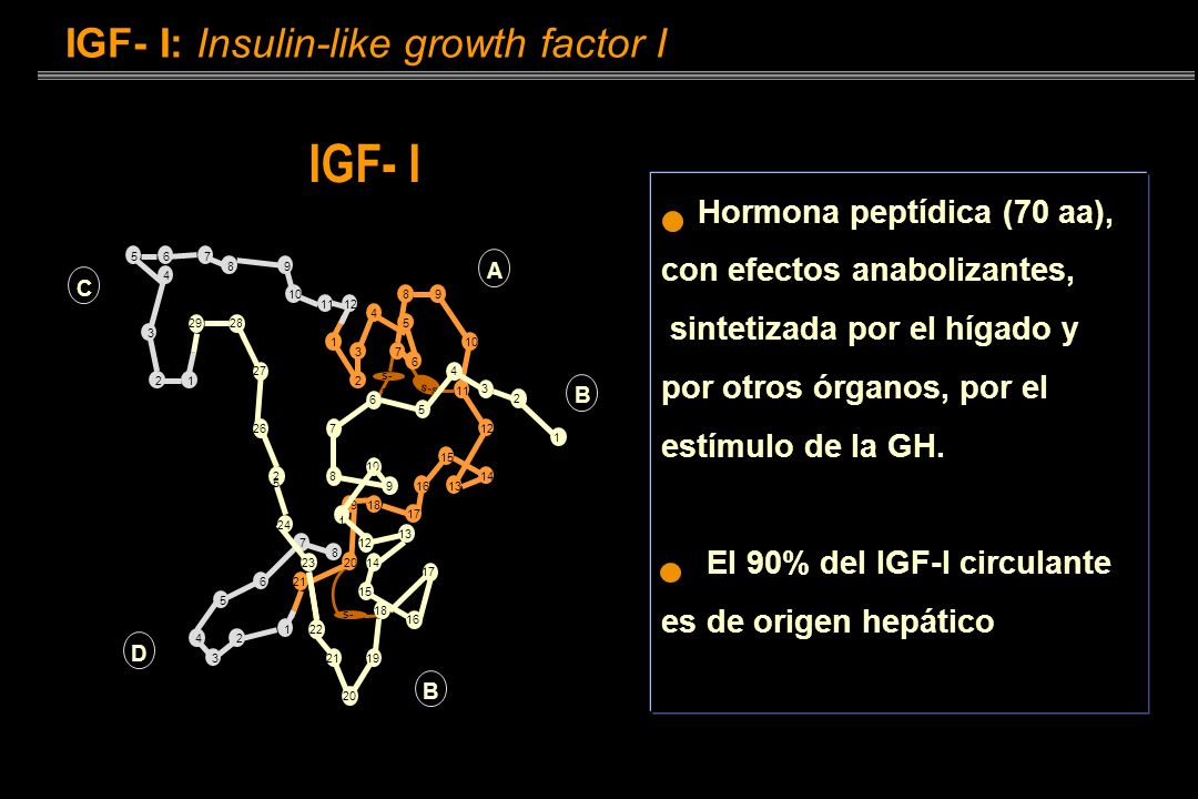 IGF- I IGF- I: Insulin-like growth factor I