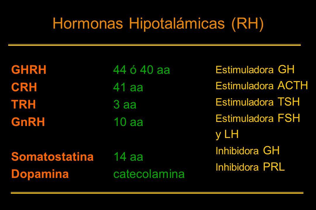 Hormonas Hipotalámicas (RH)