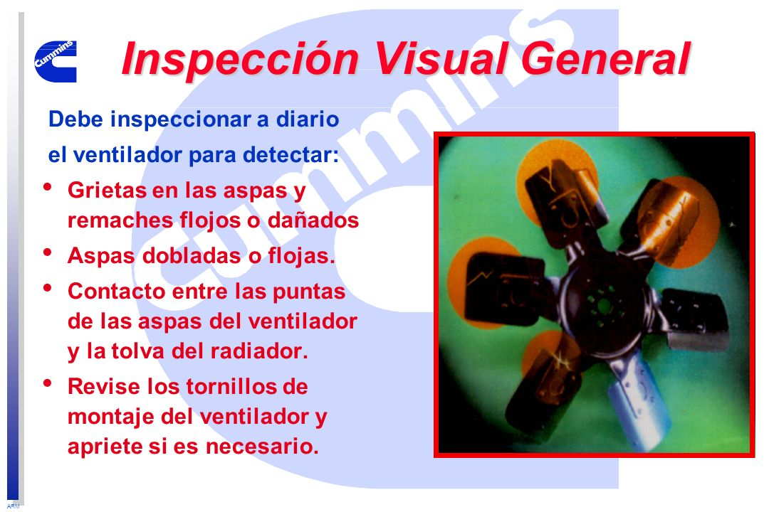 Inspección Visual General