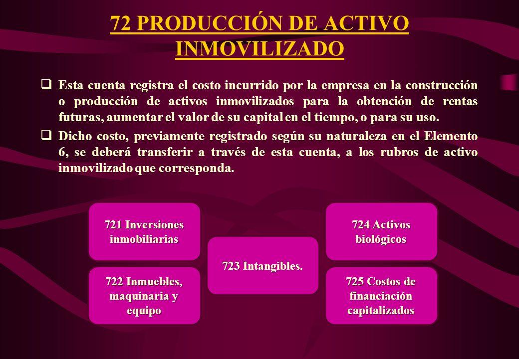 72 PRODUCCIÓN DE ACTIVO INMOVILIZADO