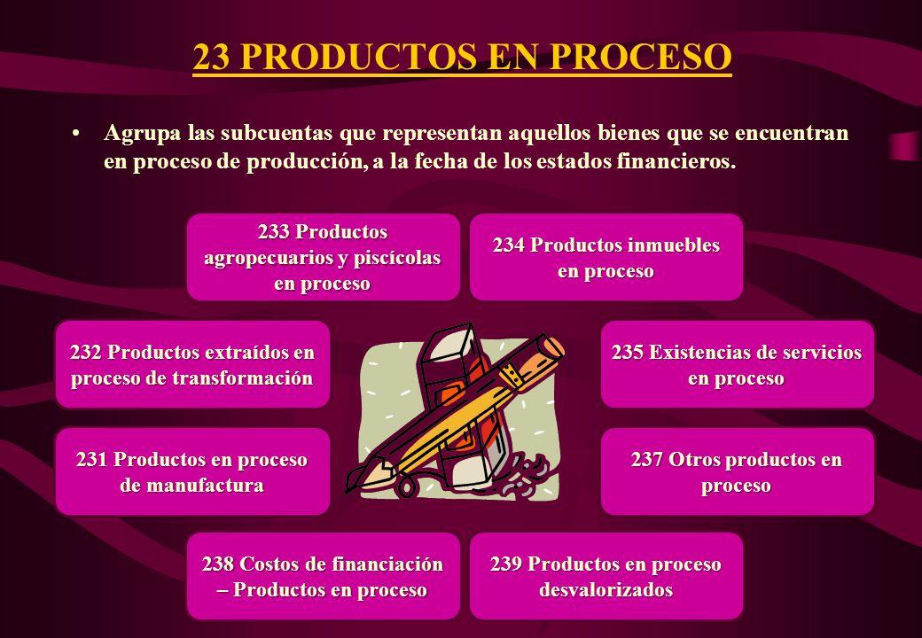 23 PRODUCTOS EN PROCESO