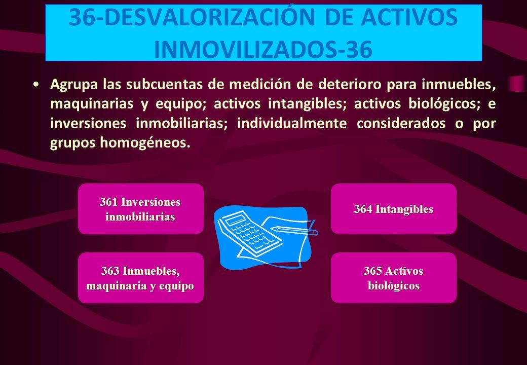 36-DESVALORIZACIÓN DE ACTIVOS INMOVILIZADOS-36