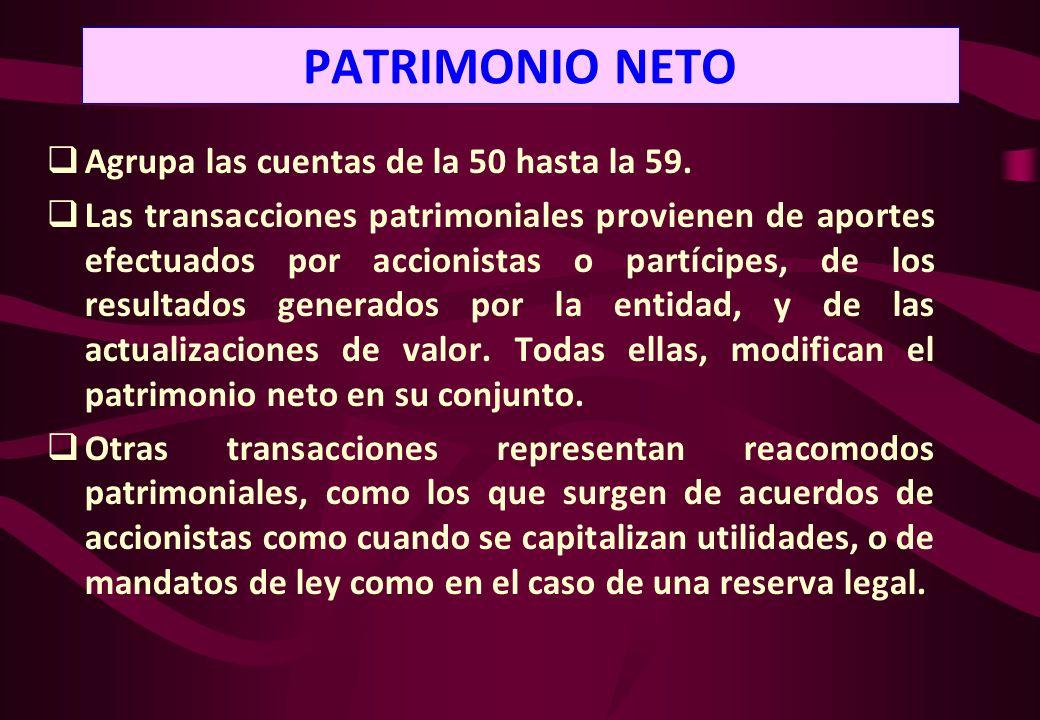 PATRIMONIO NETO Agrupa las cuentas de la 50 hasta la 59.