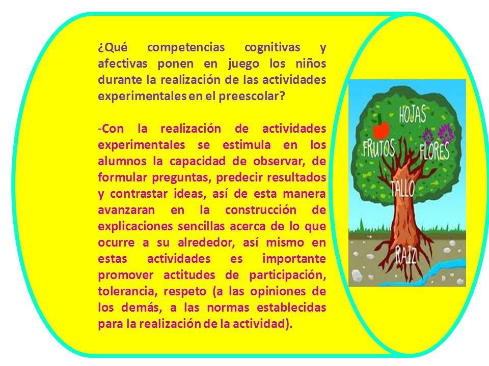 ¿Qué competencias cognitivas y afectivas ponen en juego los niños durante la realización de las actividades experimentales en el preescolar