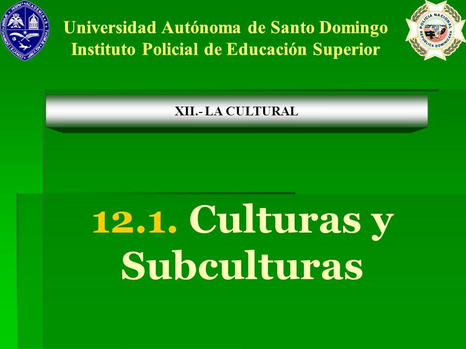 12.1. Culturas y Subculturas