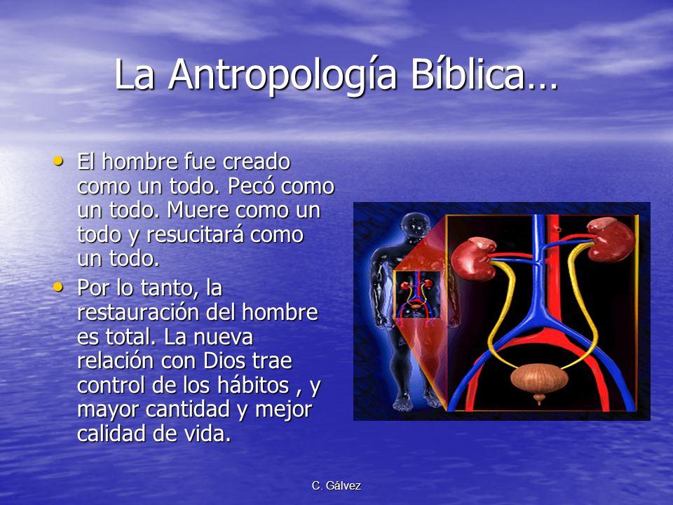La Antropología Bíblica…