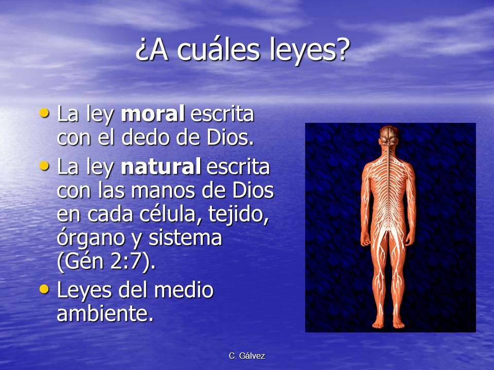 ¿A cuáles leyes La ley moral escrita con el dedo de Dios.