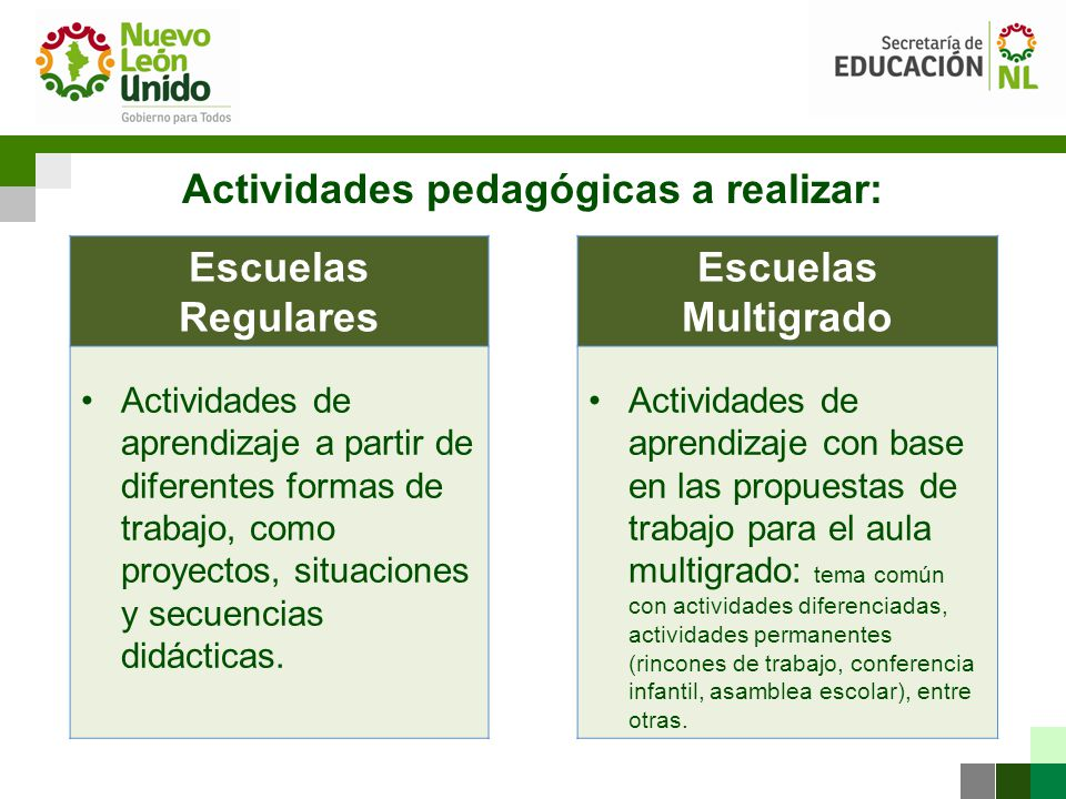 Actividades pedagógicas a realizar: