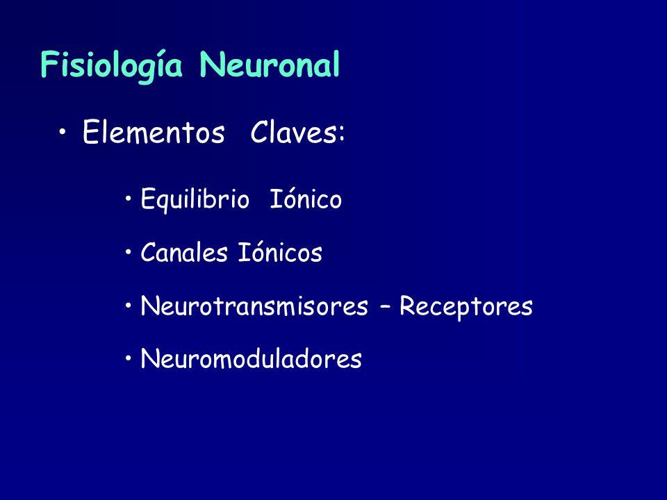 Fisiología Neuronal Elementos Claves: Equilibrio Iónico