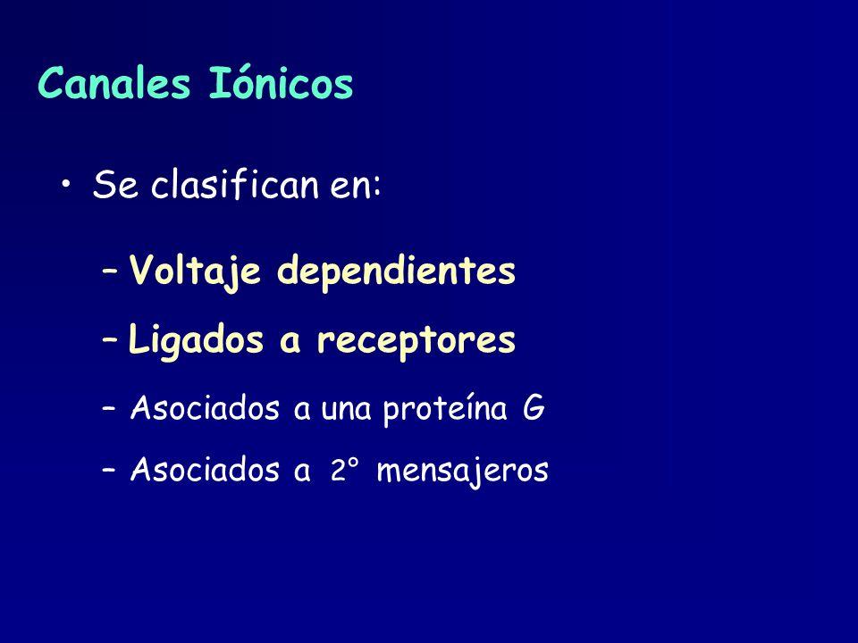Canales Iónicos Se clasifican en: Voltaje dependientes