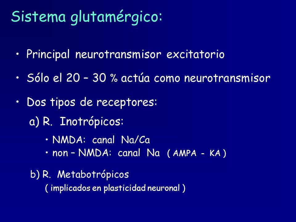 Sistema glutamérgico: