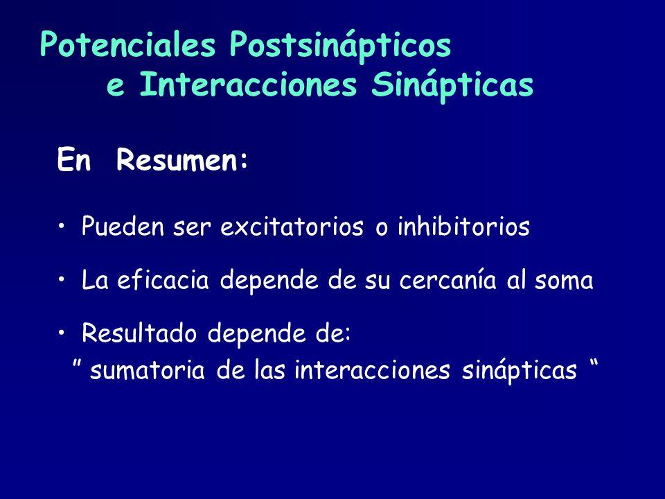 Potenciales Postsinápticos e Interacciones Sinápticas