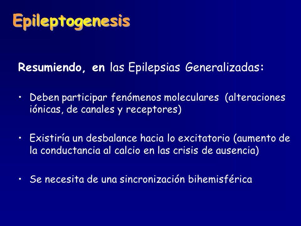 Epileptogenesis Resumiendo, en las Epilepsias Generalizadas: