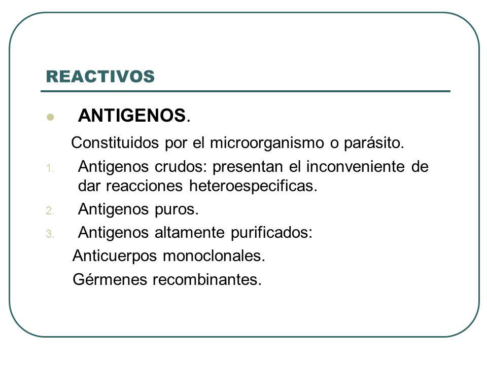 Constituidos por el microorganismo o parásito.