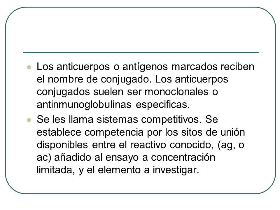 Los anticuerpos o antígenos marcados reciben el nombre de conjugado