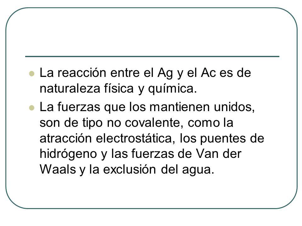 La reacción entre el Ag y el Ac es de naturaleza física y química.