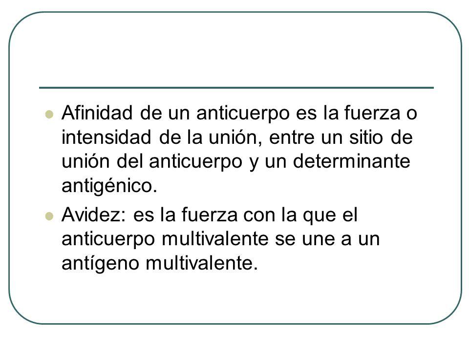 Afinidad de un anticuerpo es la fuerza o intensidad de la unión, entre un sitio de unión del anticuerpo y un determinante antigénico.