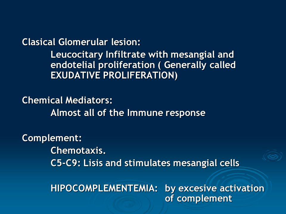 Clasical Glomerular lesion:
