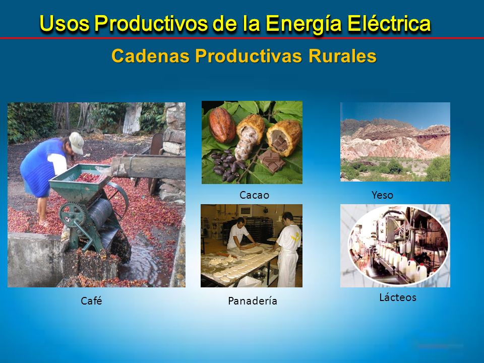 Cadenas Productivas Rurales