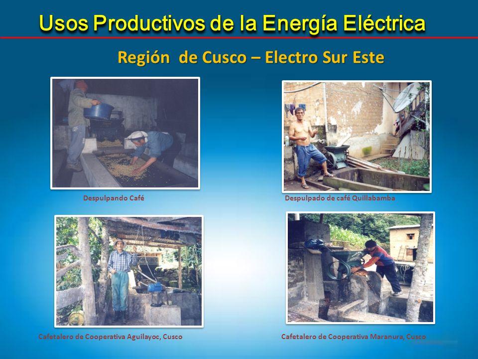 Región de Cusco – Electro Sur Este