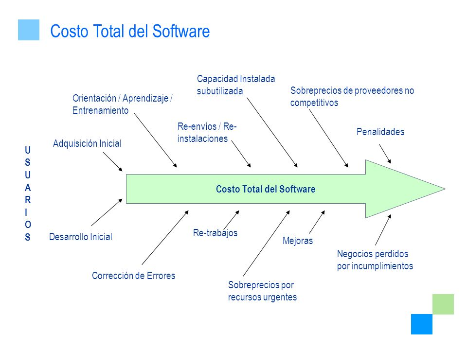 Costo Total del Software